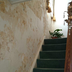 Damp Cavity Wall & Mould On Staircase
