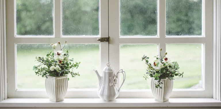 Window and plant pots